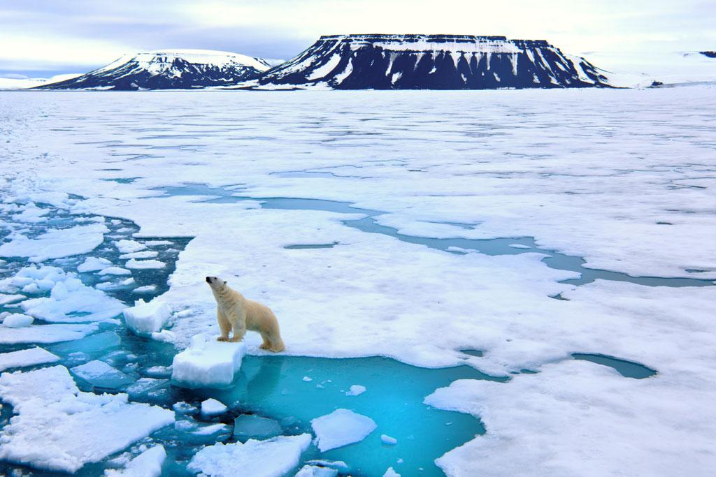 Cambiamenti climatici, per gli italiani sono la peggior minaccia a livello mondiale