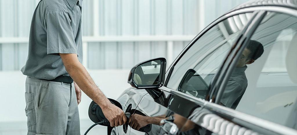 auto elettrica entra nel paniere Istat 2020