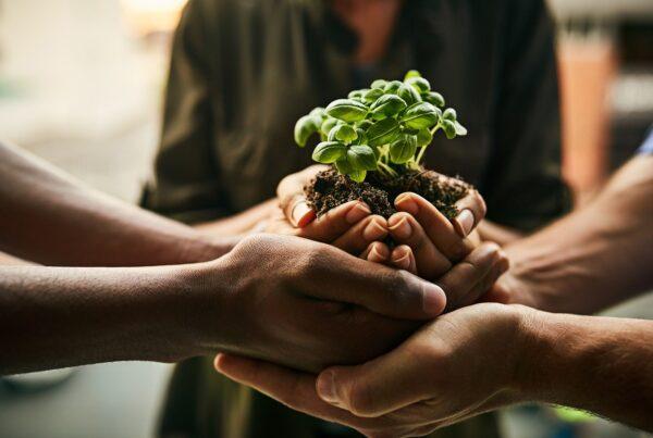 Arval e ClimateSeed lanciano una partnership globale per supportare la transizione energetica dei propri clienti 4